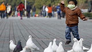 [Imagem: gripe+avi%C3%A1ria+china+guerra+biol%C3%B3gica+eua.jpg]