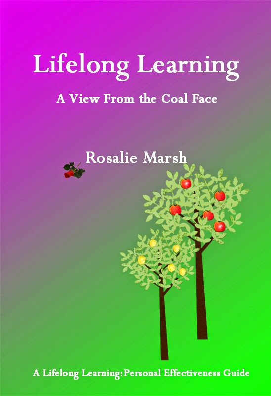 Lifelong Learning: A View from the Coal Face.