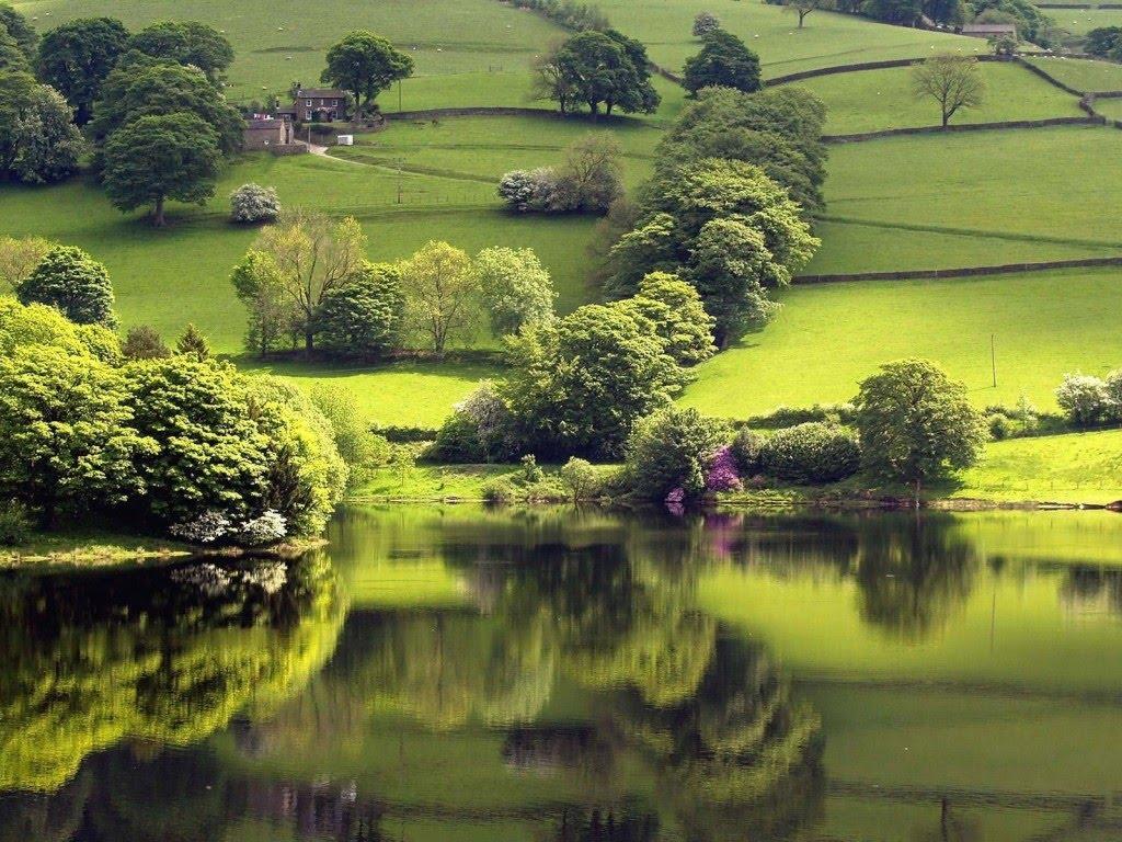 http://4.bp.blogspot.com/-TSvta8h1C7E/T8yye7FfTAI/AAAAAAAABmo/GvybzQN6_ww/s1600/Beauty+of+Nature+2.jpg