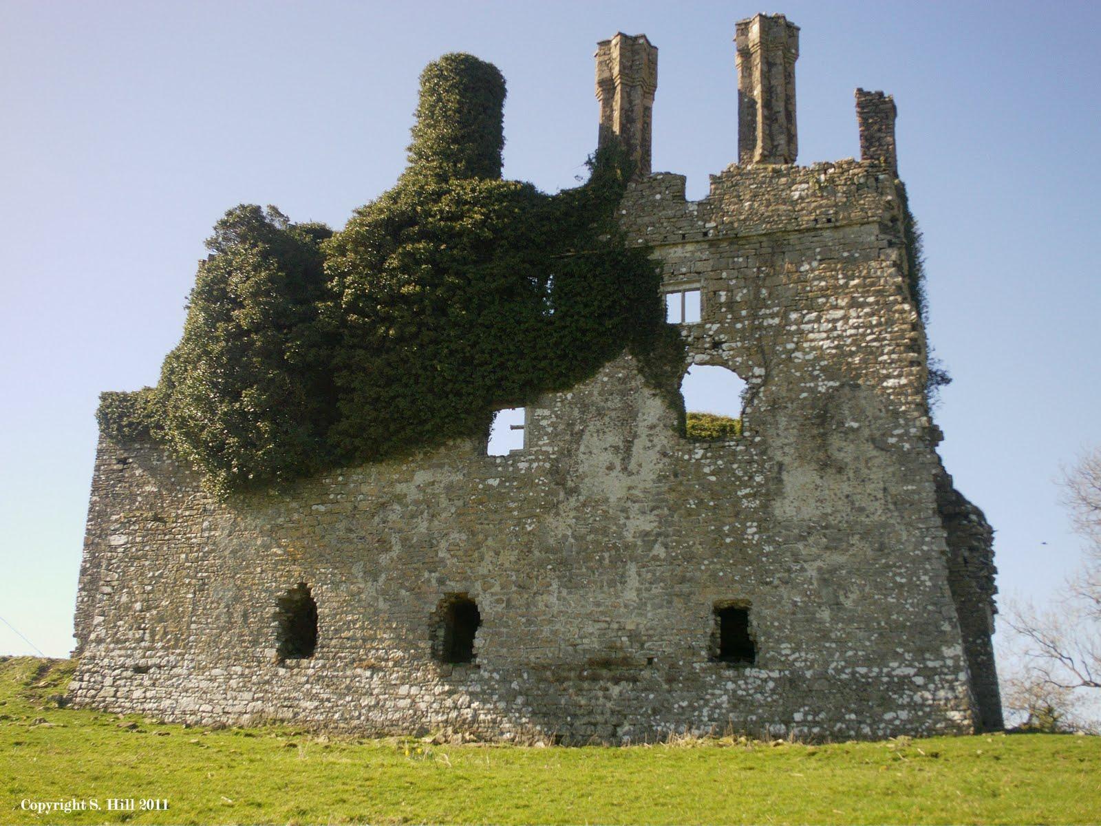 Ireland In Ruins Carbury Castle Co Kildare