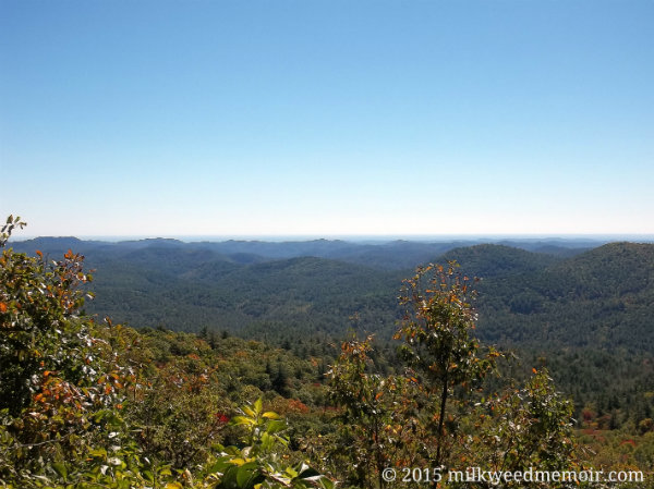 Blue Valley Overview in Nantahala National Forest near Highlands, North Carolina