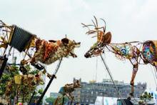 13e Festival de Casteliers/ Les Bêtes dansent ou le sortilège discret de la nature sauvage
