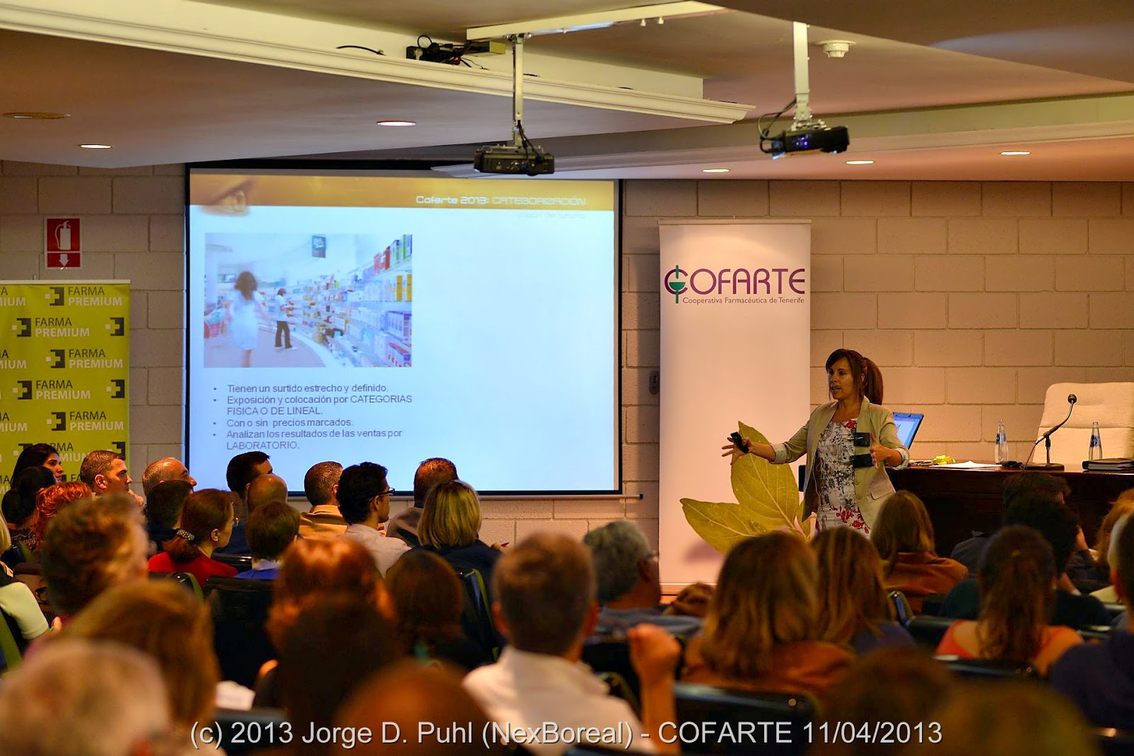 La jornada Cofarte 2013: visión de futuro destacó la importancia de la gestión por categorías para el desarrollo presente y furo de las farmacias como negocios.