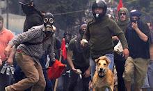 En el país de los perros libres