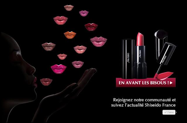 29 rouges à lèvres Laque de Rouge +  29 rouges à lèvres Rouge Parfait