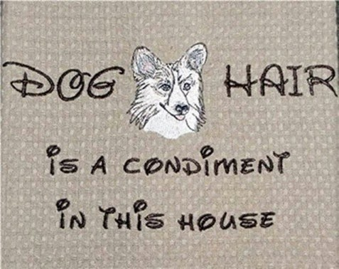 Dog Hair is a condiment in this house Disney meme