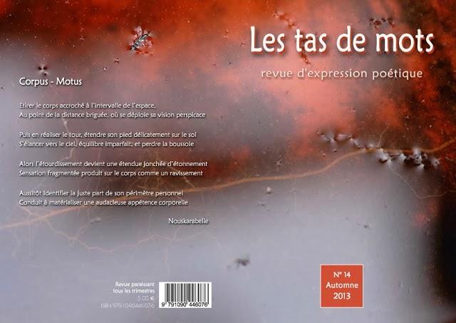 http://lestasdemots.blogspot.fr/2013/12/tas-de-mots-n14_2.html