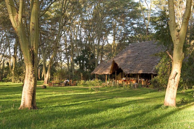 Migunga Forest Camp - Lake Manyara