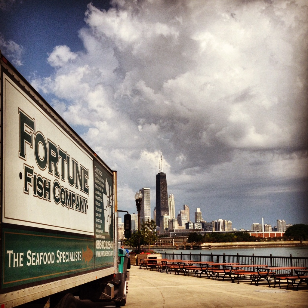 Fishinla the fortune fish show for Chicago fishing show