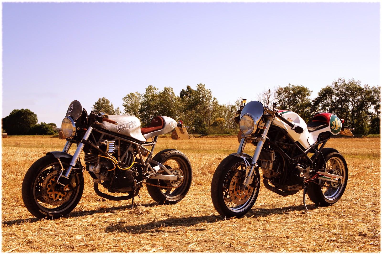 Schema Elettrico Harley Davidson 883 : Cerco contagiri harley iron modello iron marca