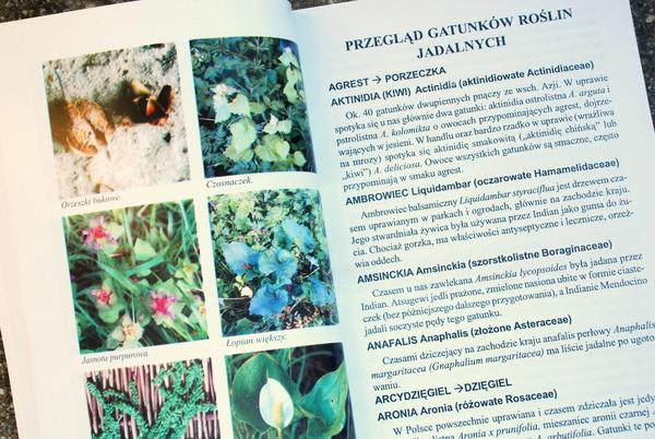 Przykładowa strona z fotografiami roślin