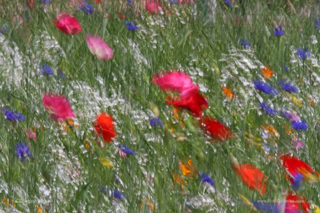 http://fineartamerica.com/weeklypromotion.html?promotionid=66992