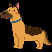 ジャーマン・シェパード・ドッグのイラスト(犬)