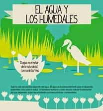 https://fundacionhombrenaturalezablog.files.wordpress.com/2013/02/infografia-humedales.jpg