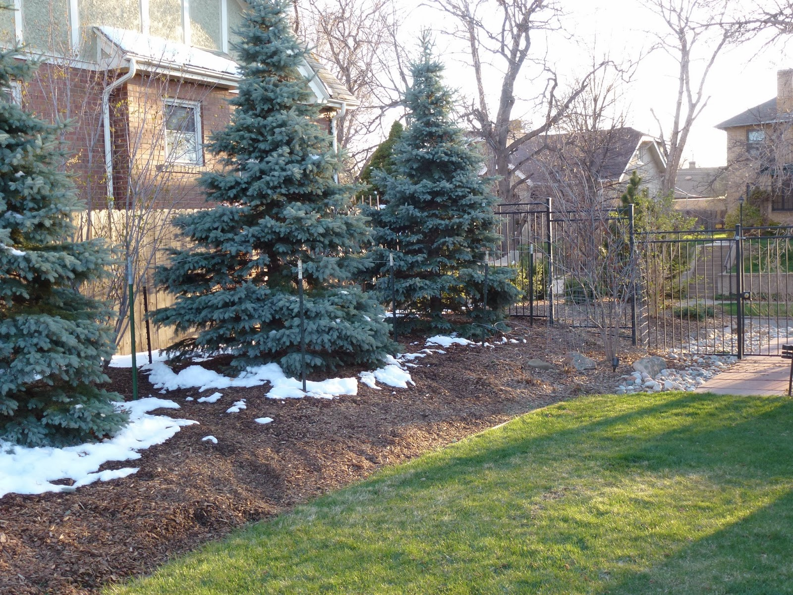 colorado garden punch list take cover winter mulching part ii