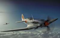 Paradise Flyer Seacat
