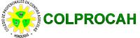 logo del Colprocah