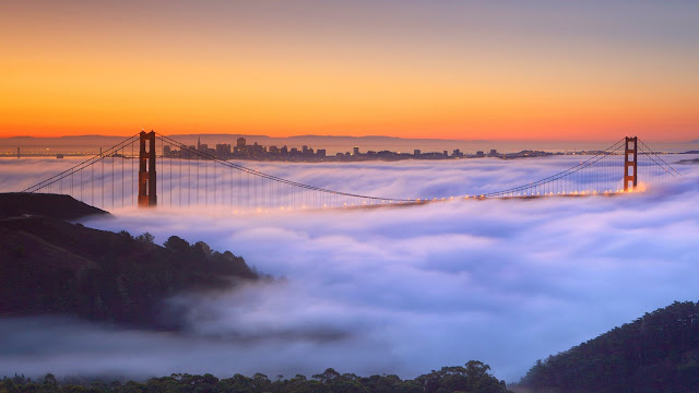 A fog-shrouded Golden Gate Bridge in San Francisco, California (© Della Huff/Alamy) 604