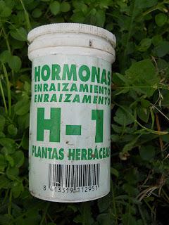 bote de hormona enraizante para plantas