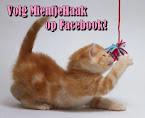 Volg MientjeHaak op Facebook!