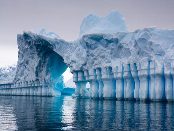 iceberg-pleneau-bay-antarcti