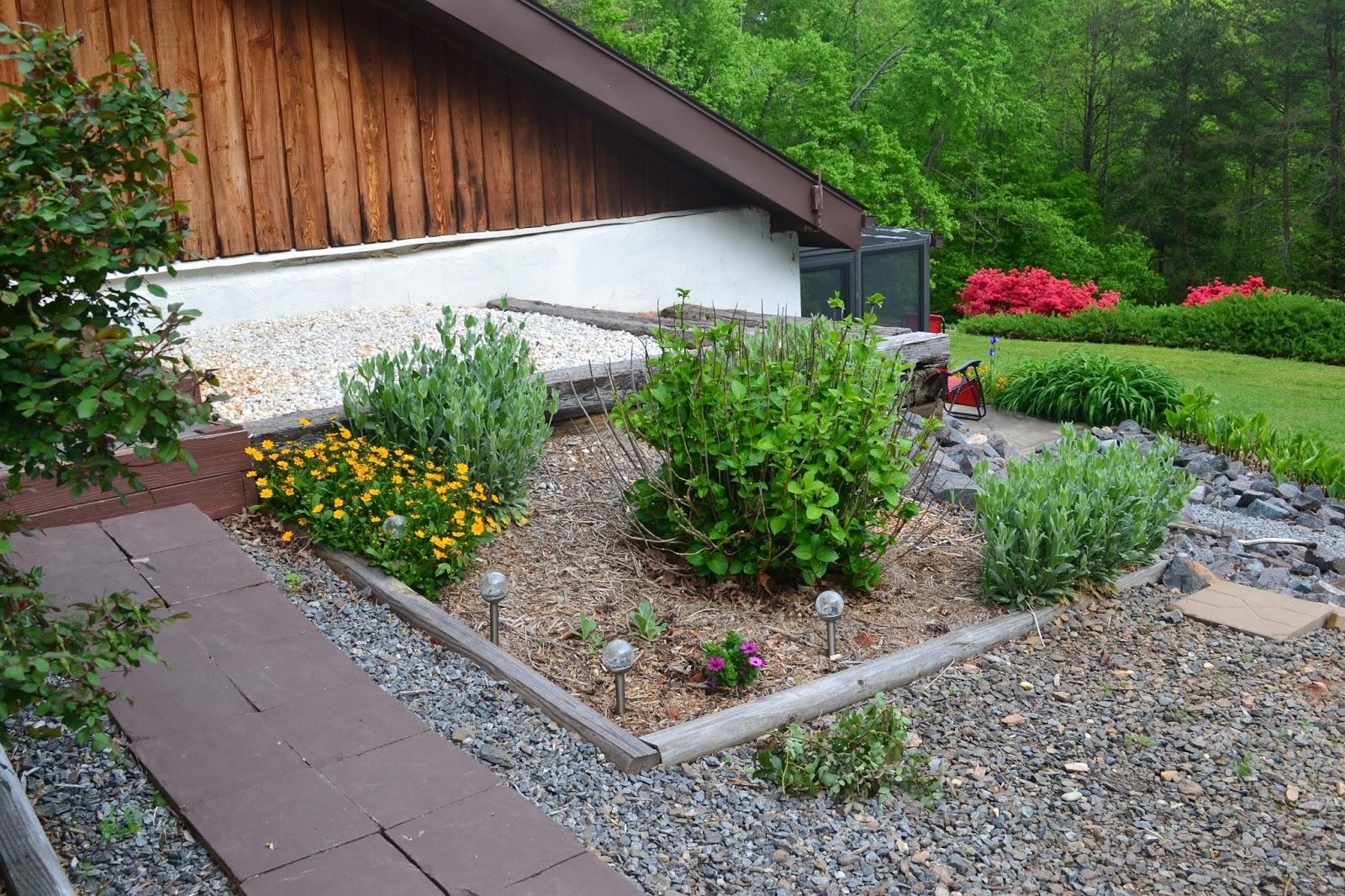 how to take ecare of rosemary bush