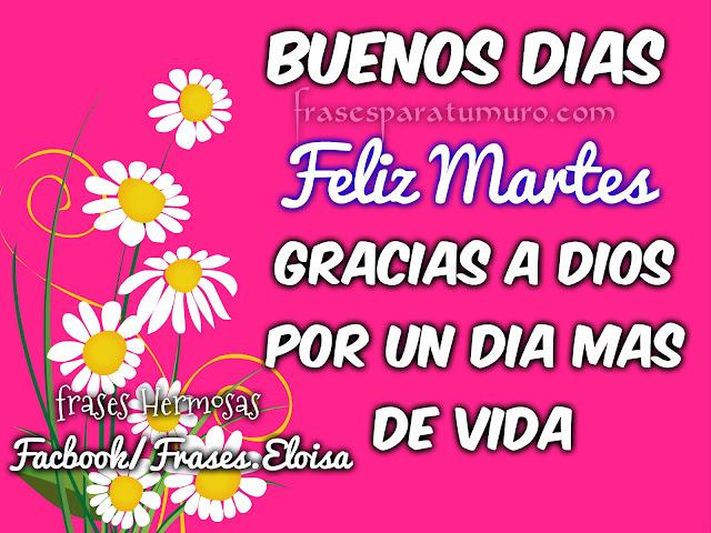 FrasesparatuMuro.com: Buenos Dias ( feliz martes )