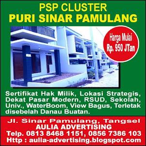 Cluster PSP