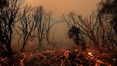 Είναι η κλιματική αλλαγή η αιτία για τα ακραία καιρικά φαινόμενα;