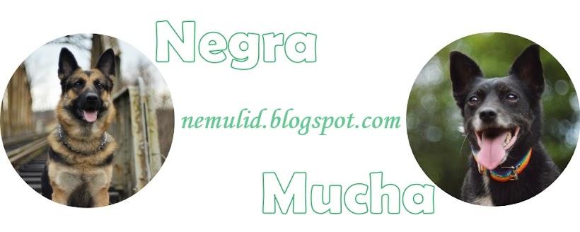 Negra&Mucha - psi team