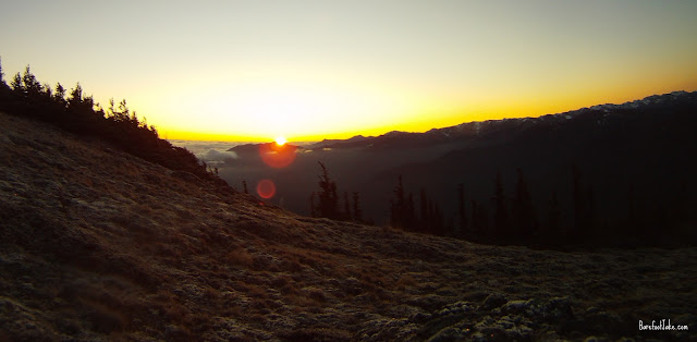 hurricane ridge sunrise