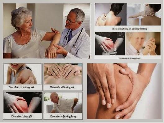 Bài thuốc chữa trị đau nhức xương khớp hiệu quả