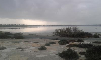 salt lake in the rain
