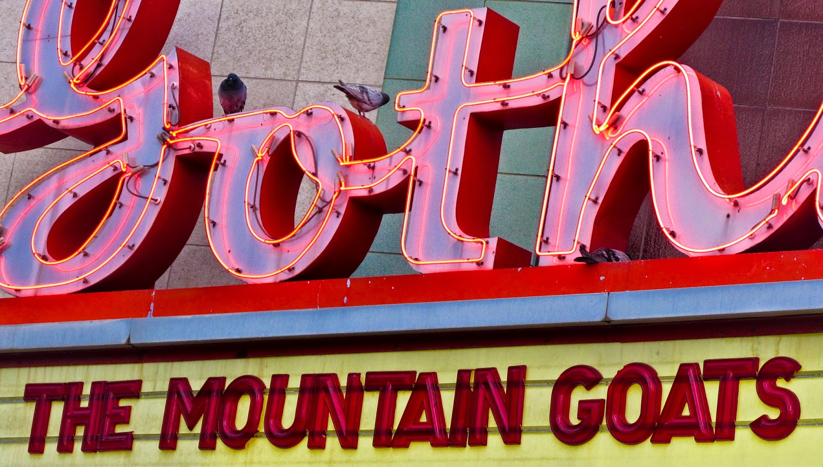 Pigeons on the Gothic Theater's neon sign before a show by The Mountain Goats.