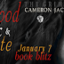 Book Blitz: Excerpt + Giveaway - Blood, Milk & Chocolate – Part 2 by Cameron Jace