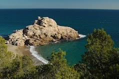 Natura catalana: Rica i plena.