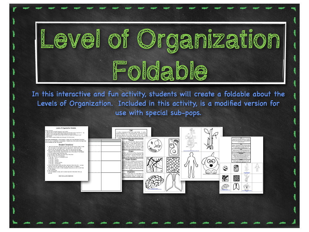 Curly Que Science Craziness and Levels of Organization – Levels of Organization Worksheet
