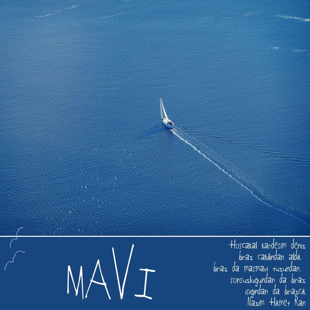 MAVI_trendkupu
