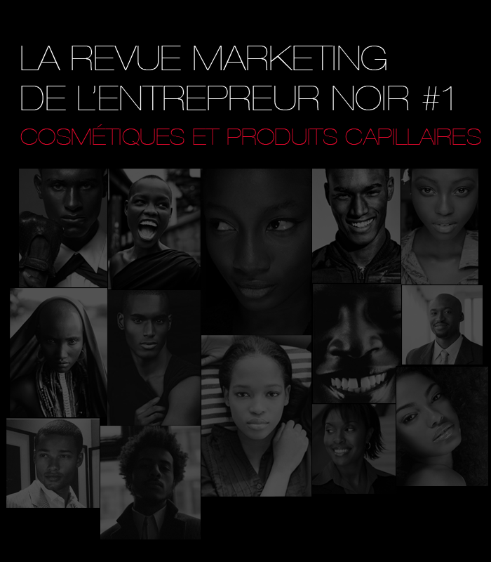 Le blog du bl dard la revue marketing de l 39 entrepreneur for Revue marketing