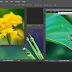 Edit Kupu Kupu Dengan Photoshop CS