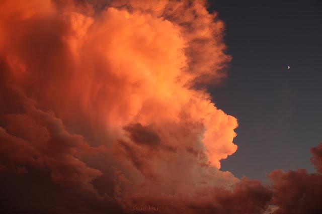 clouds, sky, photography, sarah myers, sunset, evening, desert, weather, majestic, twilight, digital, blue, orange, skies, photograph, beauty, large, vast, skyscape, landscape, cloudscape, vivid, autumn, fall, storm, thunder, cumulus, impressive, bright, night, Sonora, splendid, splenor, wild