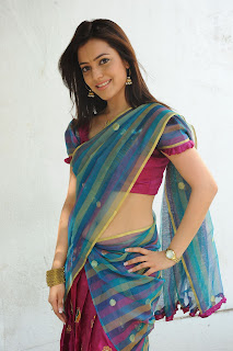 Nisha Aggarwal Huge Gallery spicy Pictures in transparent Colorful Saree Must See