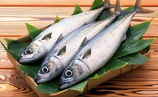 Cara mengolah ikan