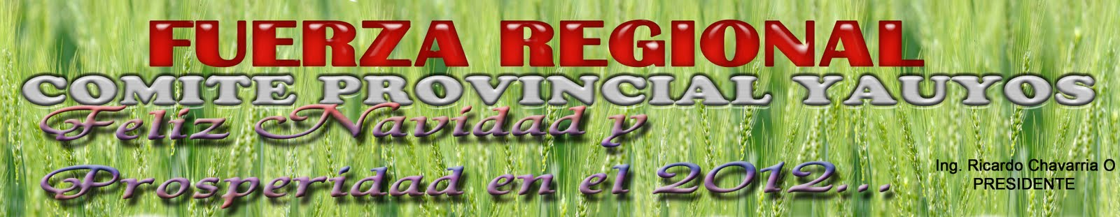 FUERZA REGIONAL YAUYOS
