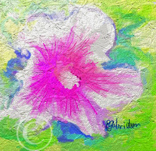 abstract digital art of a Hibiscus flower
