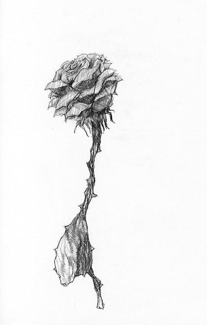 Flor embruxada susano