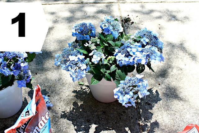 tiered planter