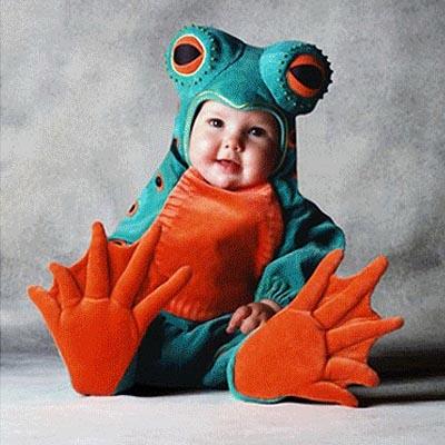 kodok lucu di website ini anda bisa melihat gambar bayi kodok lucu
