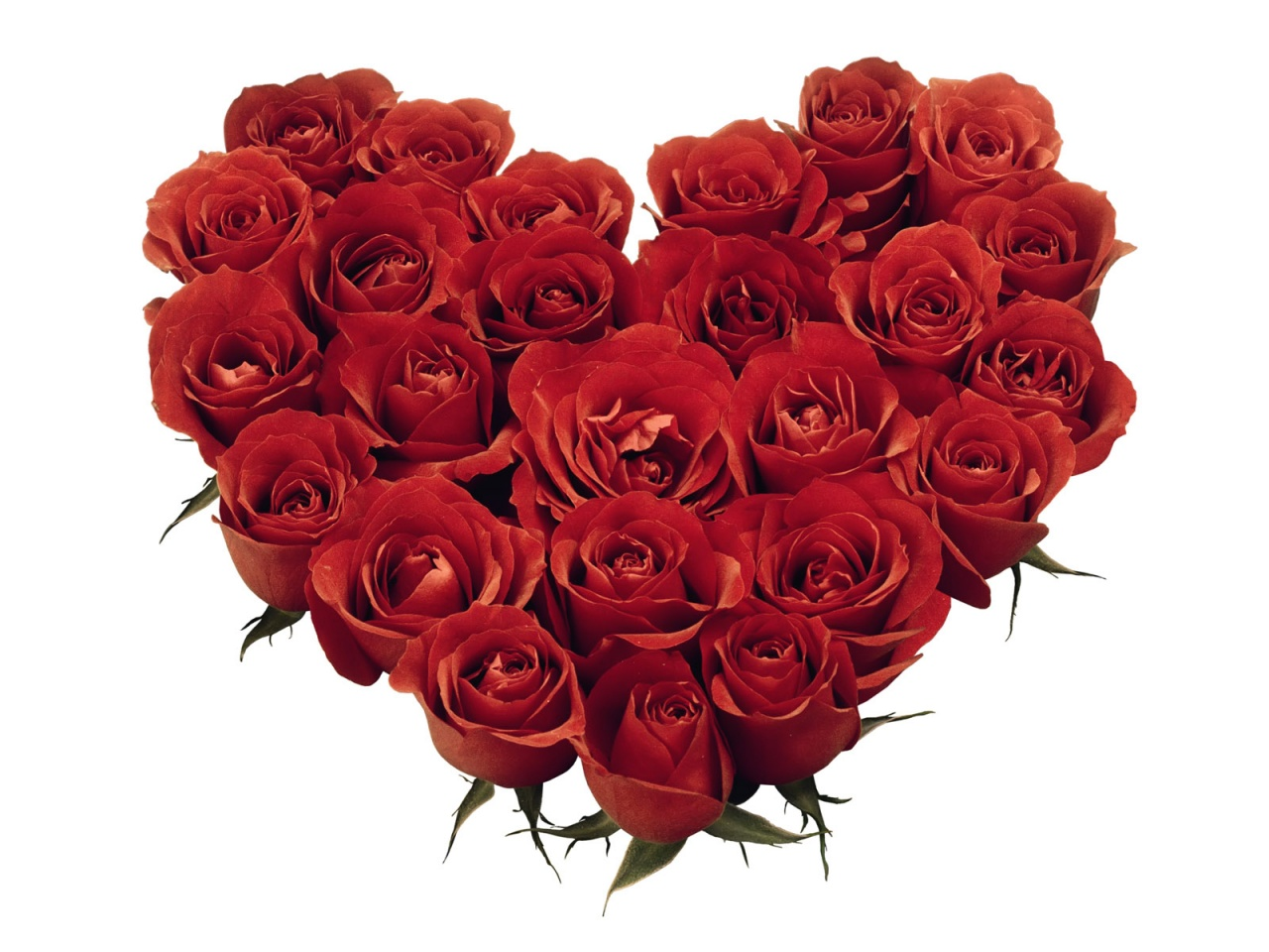 heart and roses background - photo #6