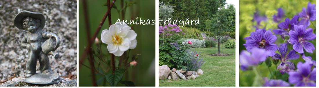 Annikas trädgård